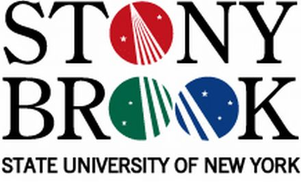 state university of new york at stony brook dissertations Johnston, adrian owen, state university of new york at stony brook, 2001, phd caareviews : dissertations each year the college art association published titles of dissertations in progress and completed during the previous academic year.